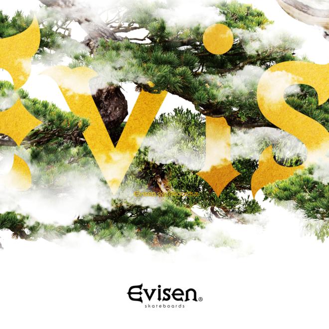 evisen_w2017_1