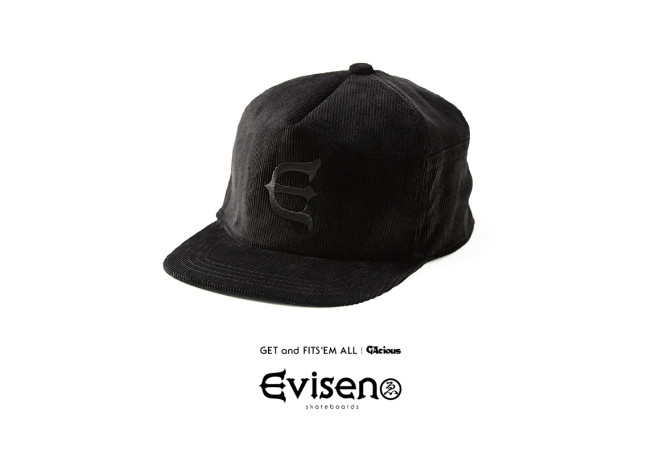 evisen_catalog2015sp_2