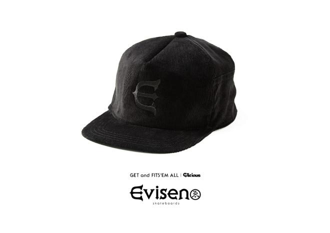evisen_catalog2015sp_2